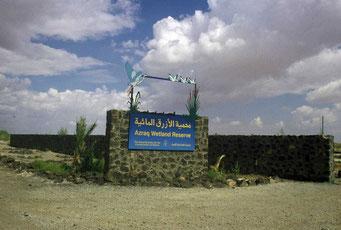 Toegang tot Azraq wetland