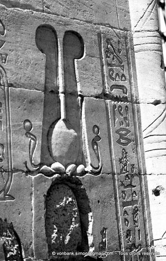 [NB076-1973-35] Philae : Temple d'Isis - Tête du pharaon Ptolémée XII Neos Dionysos (Détail de la façade du Pylône 1)