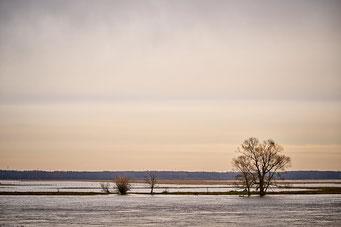 Landschaft-024
