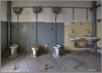 hygiene ist das Gebot der Stunde/ Dreierklo mit Abstand eignehalten, ohne Trennung! Miteinander statt getrennt !