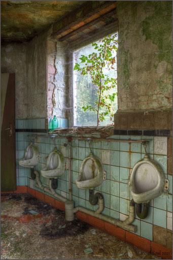 Hygiene ist das Gebot der Stunde! Baumstruktur