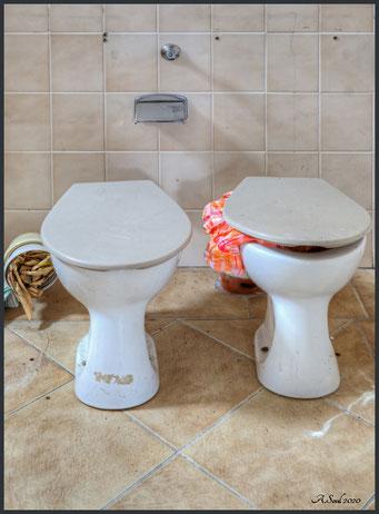Haygiene ist das Gebot der Stunde! Vorsicht hungrige Toiletten!