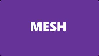 Deformer Mesh