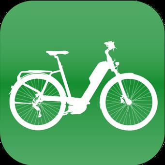 City e-Bikes kaufen in Frankfurt