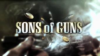 Armes sur mesure (2 épisodes) / Discovery