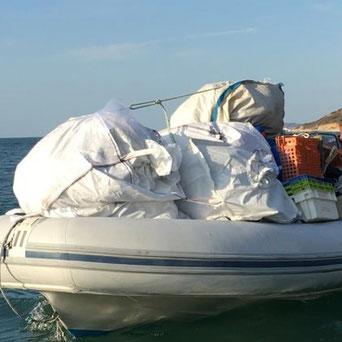 collecte de déchets sur la plage du Havre