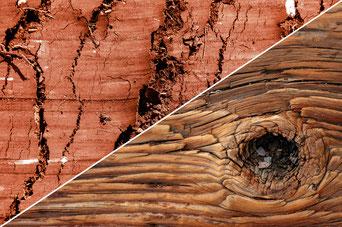 Fachwerksanierung mit Holz und Lehm