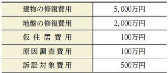 表―1 地盤保証・地盤保険内容イメージ (それぞれの項目に種々条件あり)