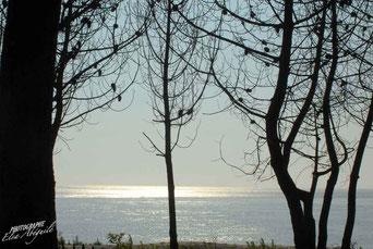 Le Petit Nice, plage océane du bassin d'Arcachon