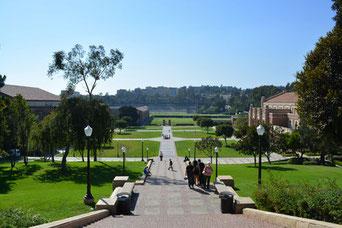 UCLAキャンパス