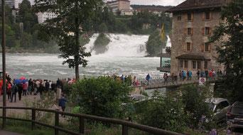 Sonntag: Bei stömendem Regen besuchen wir die imposanten Rheinfälle bei Neuhausen.