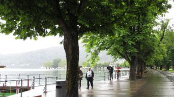 Dienstag: Wir besuchen Bregenz, leider bei Regenwetter. Wir spazieren durch die Stadt und entlang der Bodensee Promenade.