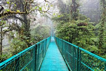 Paquete de vacaciones para visitar La Fortuna y Monteverde