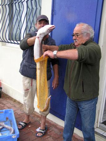 La pesée au retour des Pêcheurs