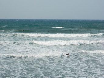さて、今年はどんな波が立つのでしょうか?楽しみです♪