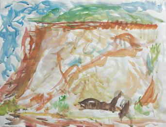WITTOW  2011  farbige Tuschen und Aquarell auf Papier