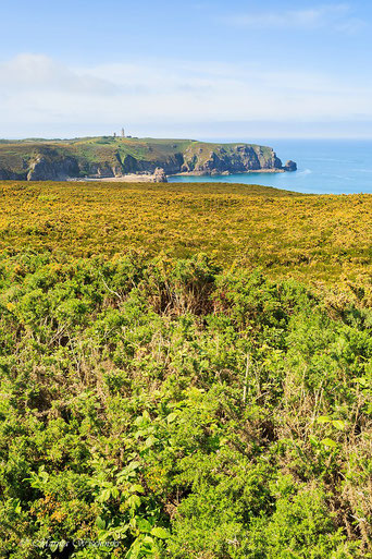 Cap Frehel; Landschaft in der Bretagne