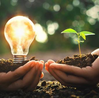 Eine Hand mit Glühbirne, eine Hand mit kleiner Pflanze - BHKW Blockheizkraftwerk