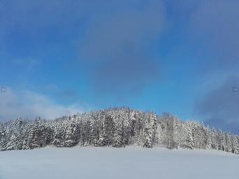 Pferdeparadies Palmetshofer Winterlandschaft