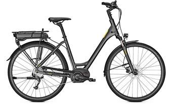 Raleigh Stoker B9 Trekking e-Bike 2019