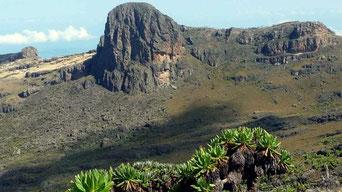 Monte Elgon Uganda