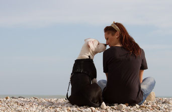Hundetrainer Harmonie