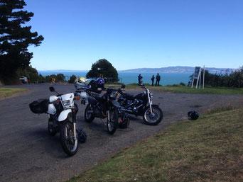 Coromandel Peninsula Lookout
