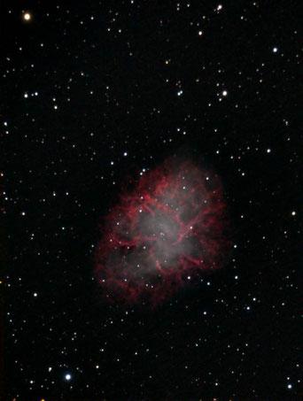 Messier 1 – Der Crabnebel im Sternbild Stier (Foto: Werner Stupka)