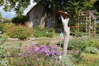 Staudenbeete mit Insektenhotel im Kreislehrgarten Loderbach Foto: Franz Kraus