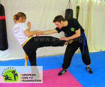 Mantis Kung Fu ist die Haupt Kampfkunst in unserer Kung Fu Schule