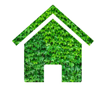 Haus in Grün