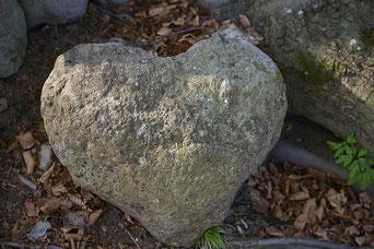 Magali Pietri - la libération du coeur 6