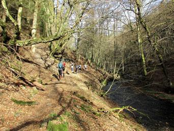 HuBuT Hunsbuckel-Trail