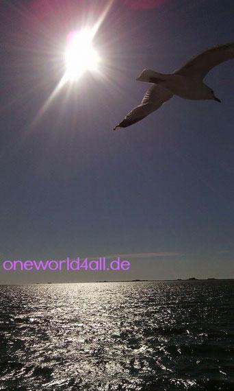 Bild: Foto:Lissy Gröner Nordsee Tod Freitod Suizid Sterbehilfe