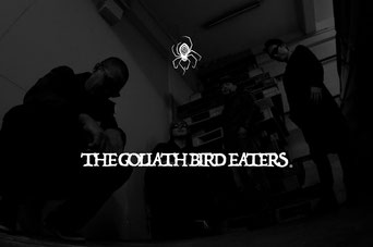The Goliath Bird Eaters