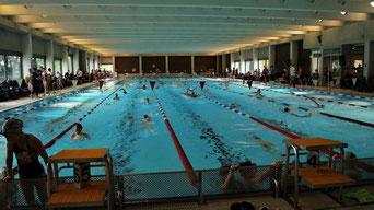 Einschwimmen am Samstag