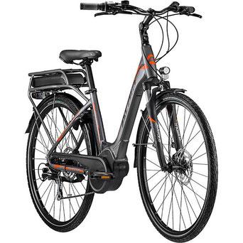 E-Bike Trekkingrad, Hercules mit Bosch-Motor