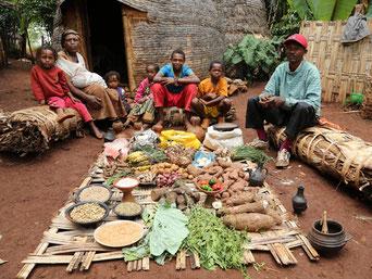 De wekelijkse boodschappen van een gezin uit Ethiopië bestaan uit veel bonen, linzen, kruiden en groenten.