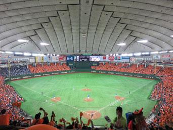 Baseball at Tokyo Dome