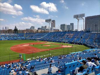 Jingu Stadium night game