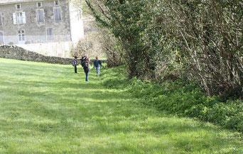 école de Pouffonds, école du Pays Mellois en Sud Deux-Sèvres - recherche de plantes sauvages : pissenlit, pâquerette et gratteron