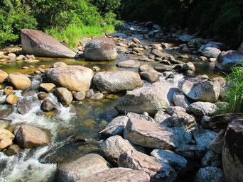 der Vermelho-Fluss