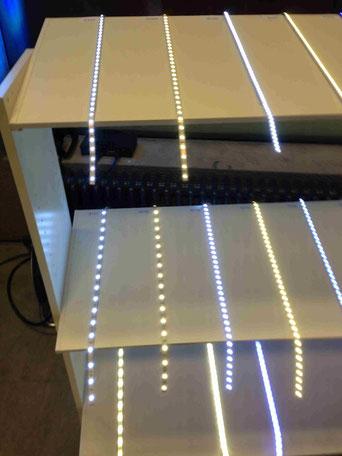 LED Beleuchtung  FFB Strom Sparen