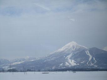 雪の磐梯山…例年よりも雪が少ないそうです。