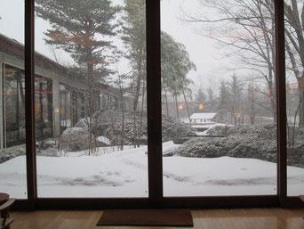 演奏の翌朝は雪でした。