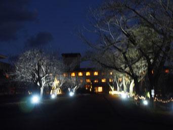 ゆと森倶楽部の夜景です。