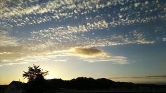 朝の澄んだ空気は季節を問わず、嬉しいものです。
