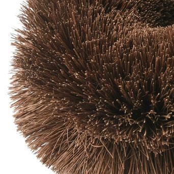 棕櫚たわしの先端を拡大した画像