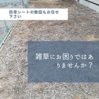 防草シート敷設前の敷地のイメージ画像