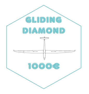 DIAMOND : Pack ' GLIDING PLATINIUM' + your enterprise's logo on my glider, my trailer, and on every single video I may produce in 2016
